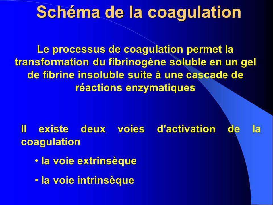 Schéma de la coagulation Le processus de coagulation permet la transformation du fibrinogène soluble en un gel de fibrine insoluble suite à une cascad