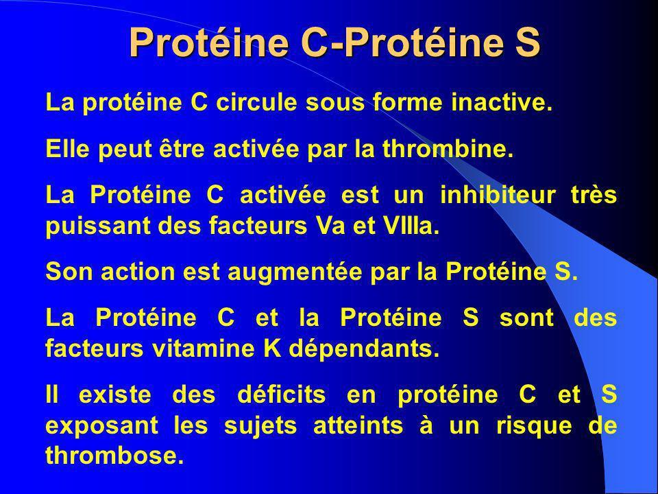 Protéine C-Protéine S La protéine C circule sous forme inactive. Elle peut être activée par la thrombine. La Protéine C activée est un inhibiteur très