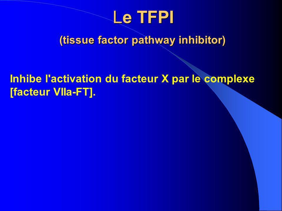 Le TFPI (tissue factor pathway inhibitor) Le TFPI (tissue factor pathway inhibitor) Inhibe l'activation du facteur X par le complexe [facteur VIIa-FT]