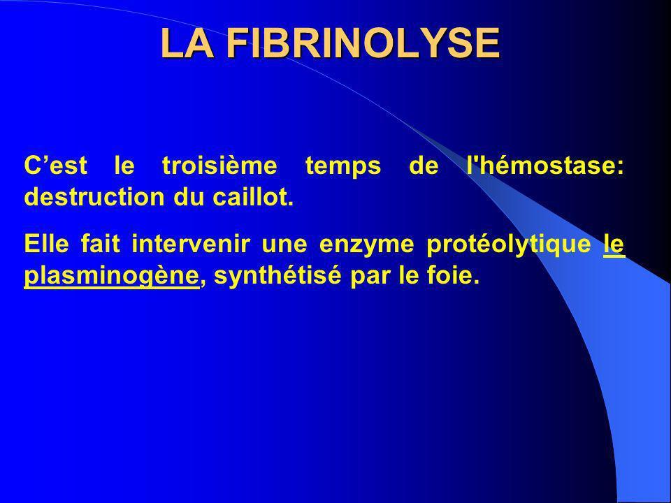 LA FIBRINOLYSE Cest le troisième temps de l'hémostase: destruction du caillot. Elle fait intervenir une enzyme protéolytique le plasminogène, synthéti