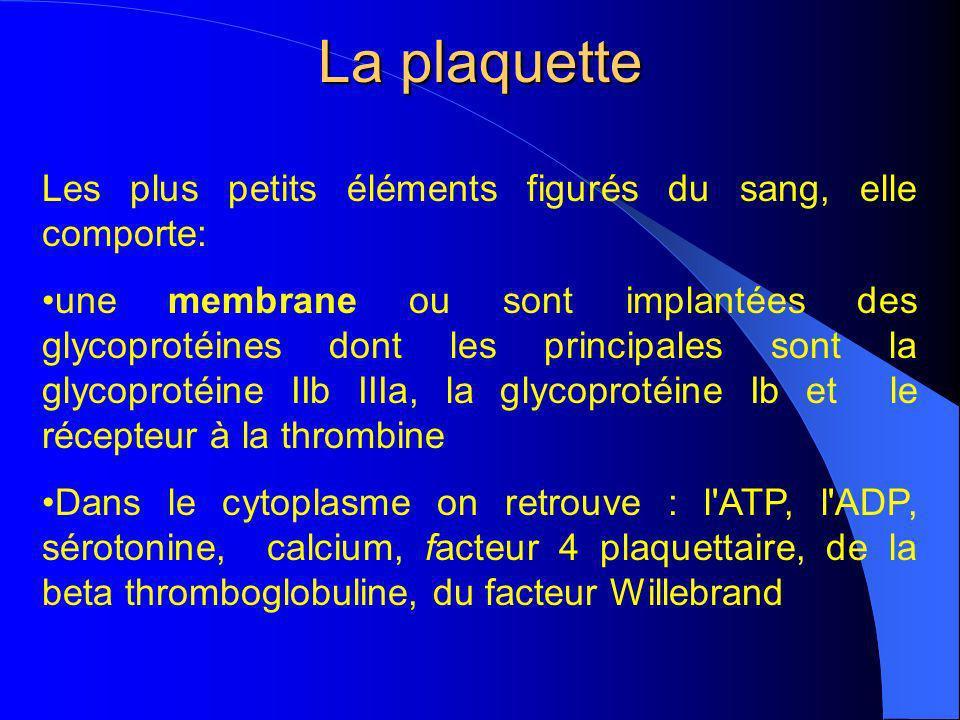La plaquette Les plus petits éléments figurés du sang, elle comporte: une membrane ou sont implantées des glycoprotéines dont les principales sont la