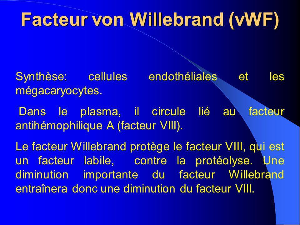 Facteur von Willebrand (vWF) Synthèse: cellules endothéliales et les mégacaryocytes. Dans le plasma, il circule lié au facteur antihémophilique A (fac