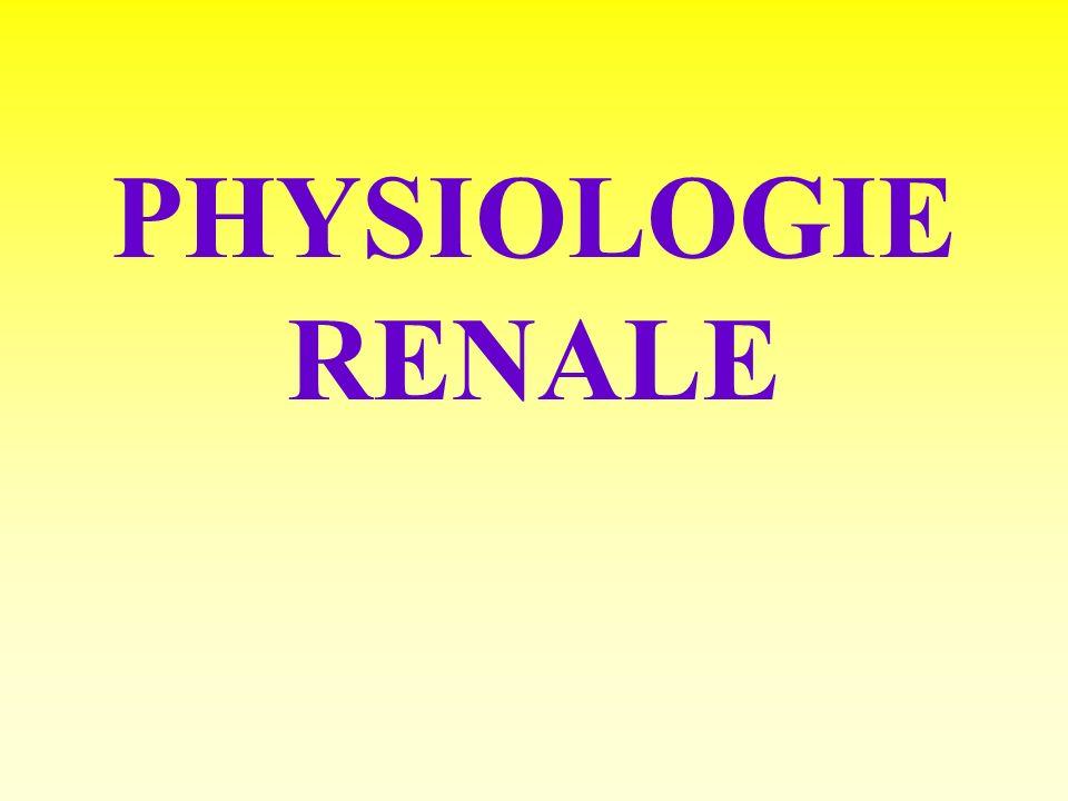 La rénine Angiotensinogène Angiotensine 1 Angiotensine 2 Aldostérone