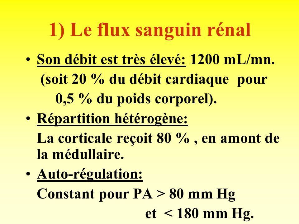 FORMATION DE LURINE 1) Flux sanguin rénal. 2) Filtration glomérulaire. 3) Transferts tubulaires.