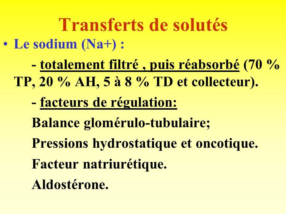 Mécanismes des transferts Soit transferts actifs: Consomment de lénergie. Capacité maximale = Tm. Soit transferts passifs: Non limités. Gradient de co