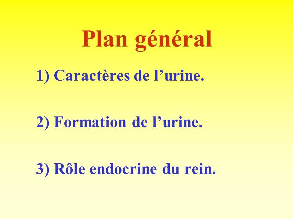 Mesure de la filtration glomérulaire: la clairance rénale.