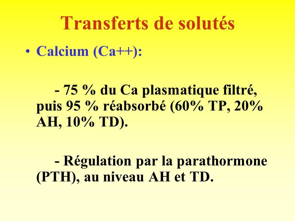 Transferts de solutés Lacide urique: - Réabsorbé, puis sécrété en quantité variable. - Sécrétion active, par mécanisme commun au acides organiques (co
