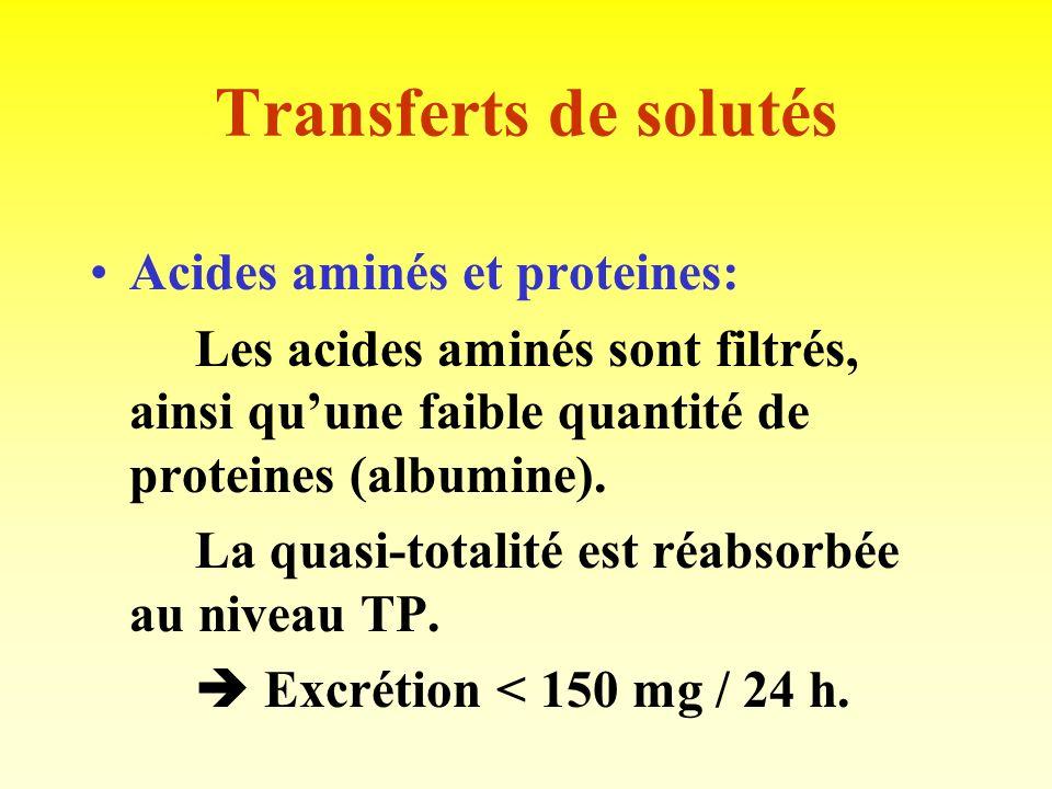 Transferts de solutés Le glucose: - Après filtration, la totalité est réabsorbée au niveau du TP. - Capacité maximale (ou TmG): 350 mg / mn. - Corresp