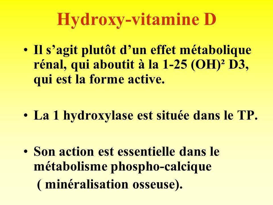 Erythropoiétine (EPO) Glycoproteine produite dans linterstitium péri-tubulaire. Stimule la lignée rouge, dans la moelle osseuse ( production dhématies