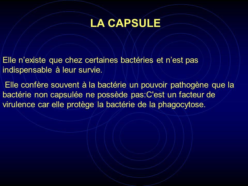 Elle nexiste que chez certaines bactéries et nest pas indispensable à leur survie. Elle confère souvent à la bactérie un pouvoir pathogène que la bact