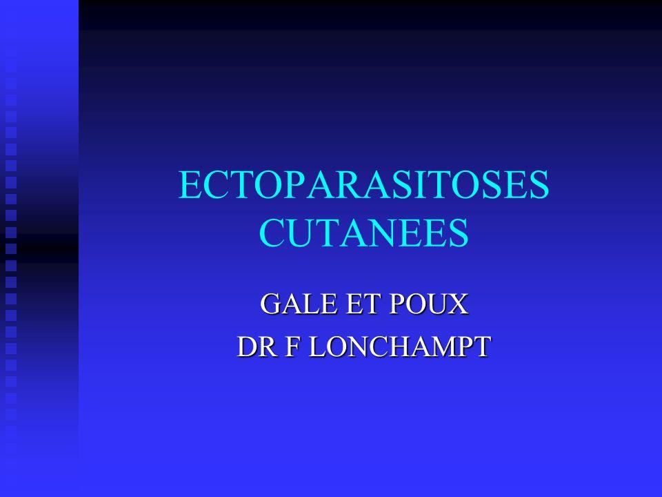 ECTOPARASITOSES CUTANEES GALE ET POUX DR F LONCHAMPT