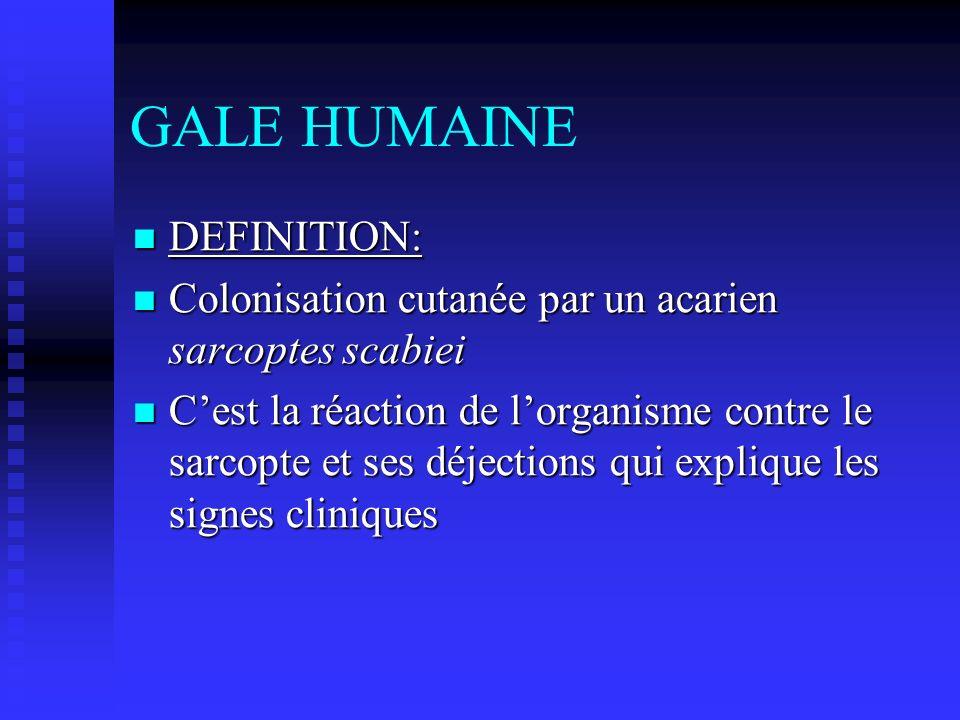 GALE HUMAINE DEFINITION: DEFINITION: Colonisation cutanée par un acarien sarcoptes scabiei Colonisation cutanée par un acarien sarcoptes scabiei Cest