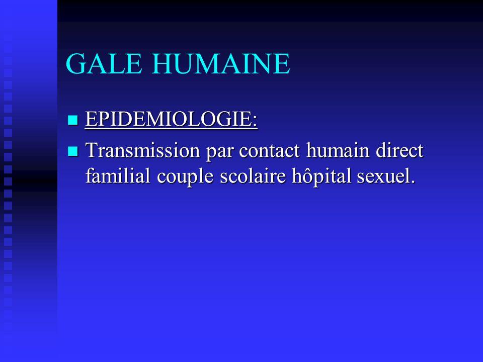 GALE HUMAINE EPIDEMIOLOGIE: EPIDEMIOLOGIE: Transmission par contact humain direct familial couple scolaire hôpital sexuel. Transmission par contact hu