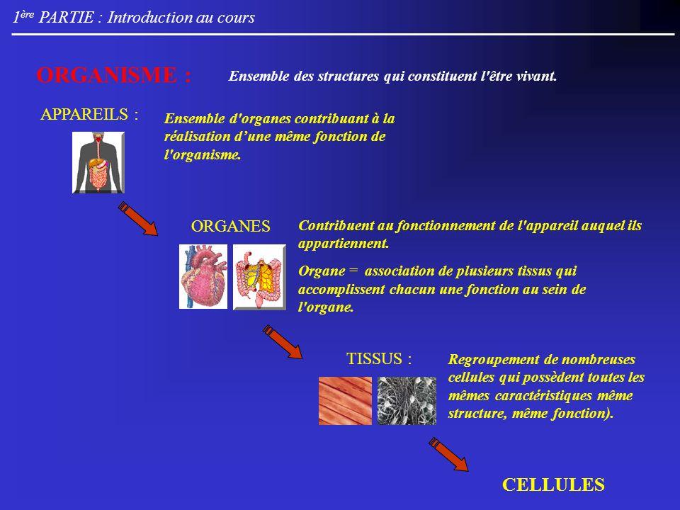 1 ère PARTIE : Introduction au cours ORGANISME : CELLULES Ensemble des structures qui constituent l'être vivant. APPAREILS : Ensemble d'organes contri