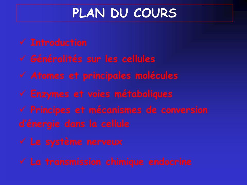 Introduction Généralités sur les cellules Enzymes et voies métaboliques Principes et mécanismes de conversion dénergie dans la cellule Le système nerveux La transmission chimique endocrine Atomes et principales molécules PLAN DU COURS