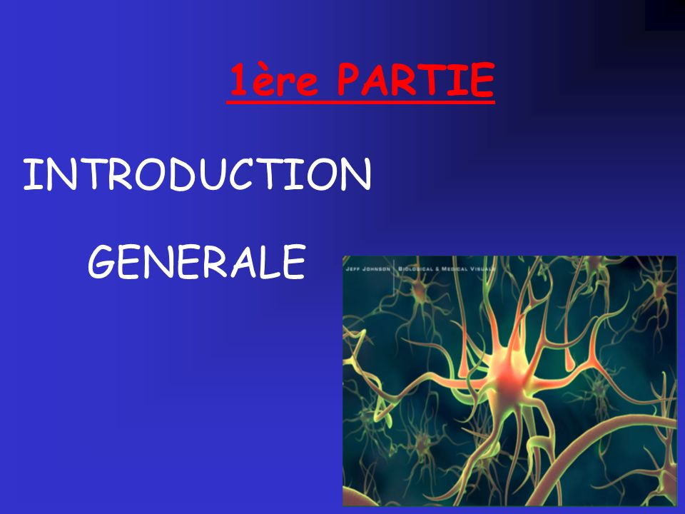 1ère PARTIE INTRODUCTION GENERALE