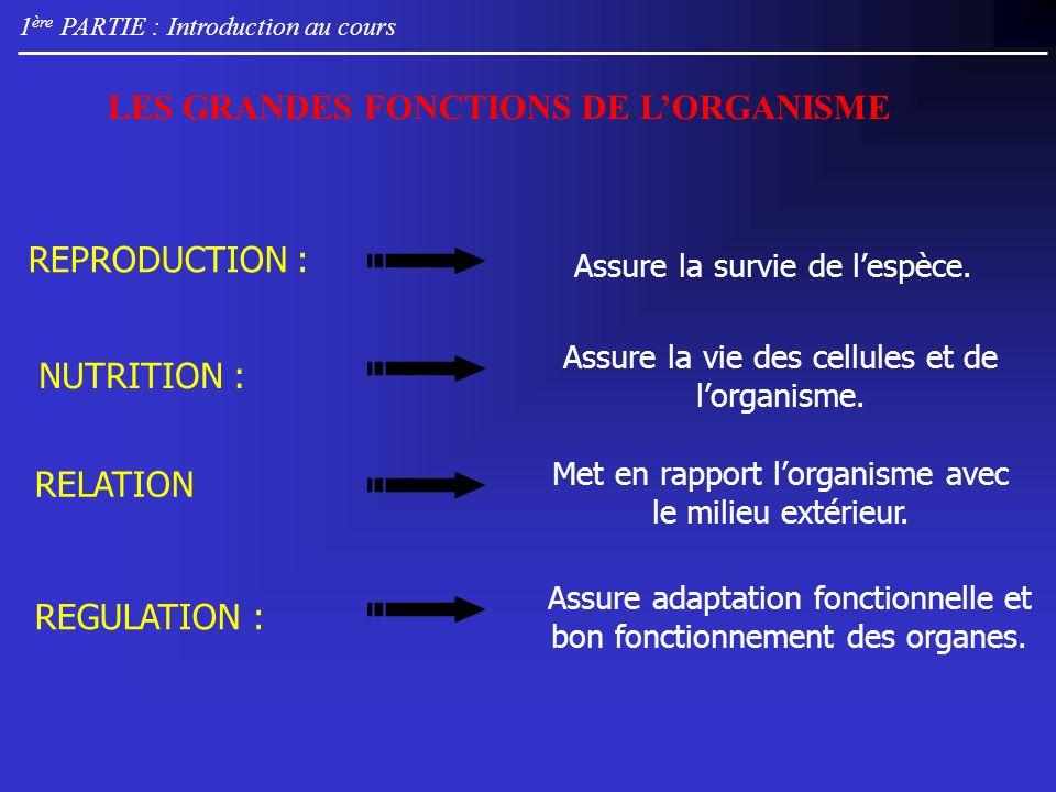 1 ère PARTIE : Introduction au cours Met en rapport lorganisme avec le milieu extérieur.