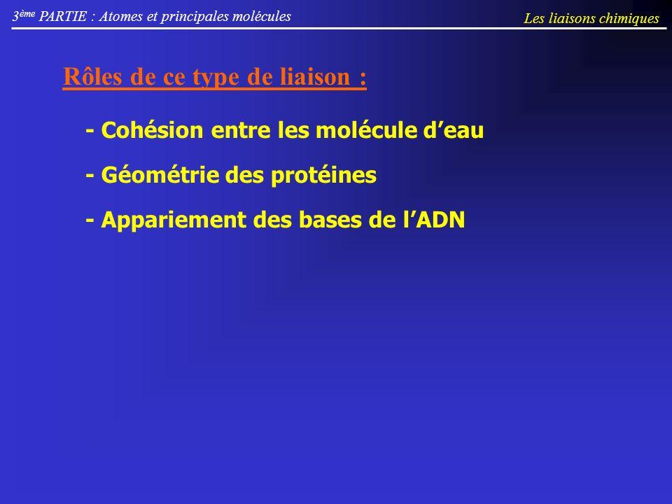 3 ème PARTIE : Atomes et principales molécules Rôles de ce type de liaison : - Cohésion entre les molécule deau - Géométrie des protéines - Appariement des bases de lADN Les liaisons chimiques