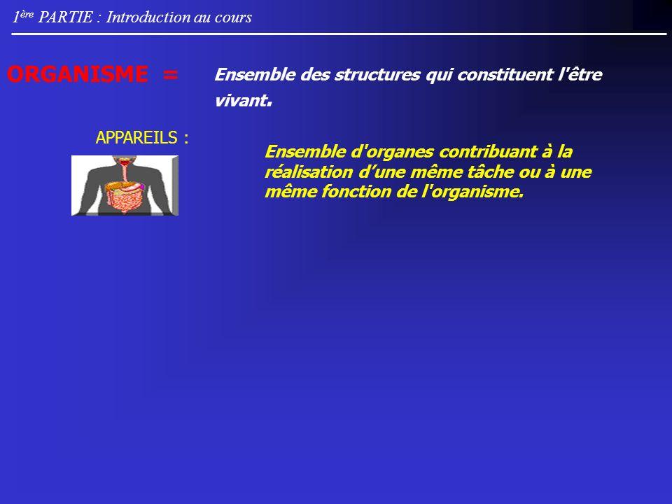1 ère PARTIE : Introduction au cours Appareil Digestif : assure transformations mécanique et chimique des aliments.
