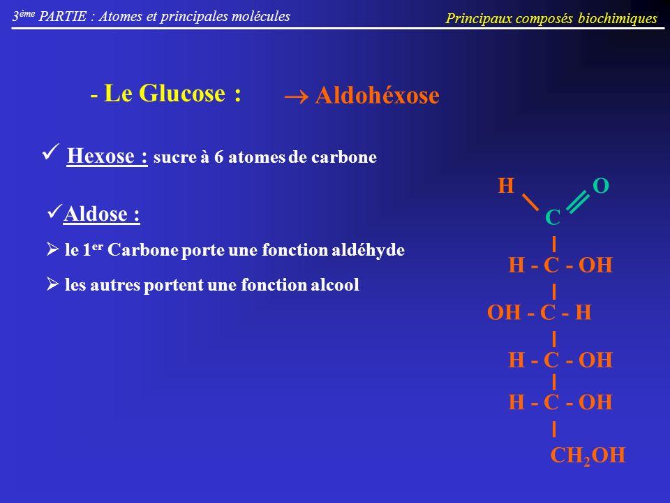 3 ème PARTIE : Atomes et principales molécules Principaux composés biochimiques Aldohéxose - Le Glucose : Hexose : sucre à 6 atomes de carbone Aldose : le 1 er Carbone porte une fonction aldéhyde les autres portent une fonction alcool OH - C - H H - C - OH CH 2 OH H - C - OH C OH