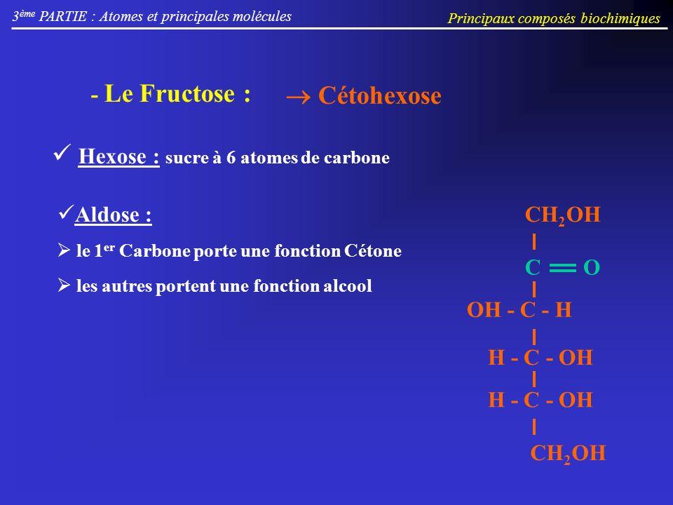 3 ème PARTIE : Atomes et principales molécules Principaux composés biochimiques Cétohexose - Le Fructose : Hexose : sucre à 6 atomes de carbone Aldose : le 1 er Carbone porte une fonction Cétone les autres portent une fonction alcool OH - C - H H - C - OH CH 2 OH H - C - OH CO CH 2 OH