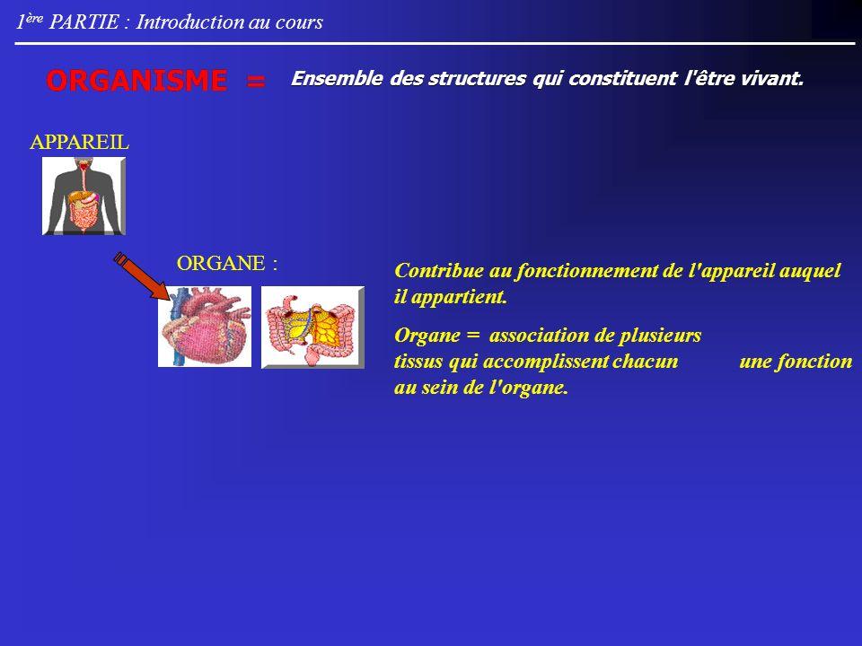 3 ème PARTIE : Atomes et principales molécules Introduction 99 % du poids de la cellule.