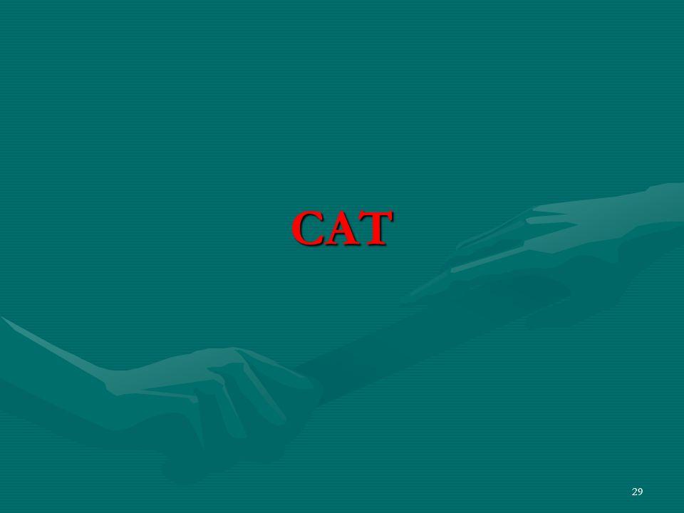 29 CAT