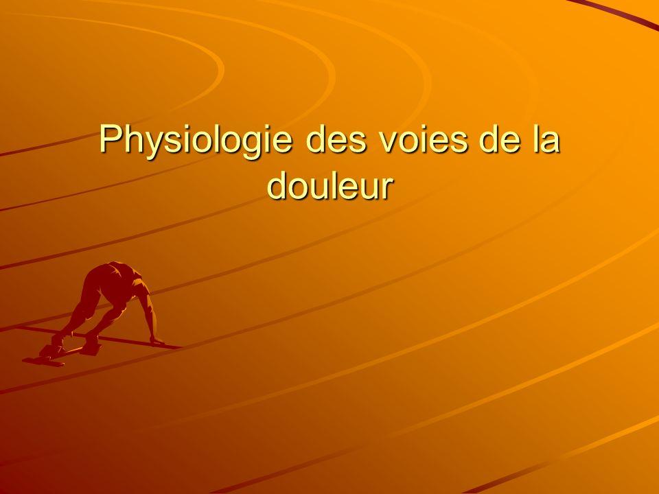 Physiologie des voies de la douleur