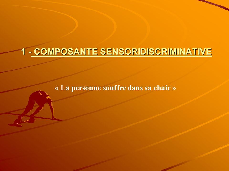 1 - COMPOSANTE SENSORIDISCRIMINATIVE « La personne souffre dans sa chair »