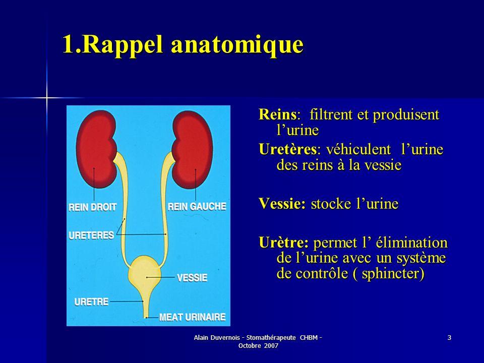 Alain Duvernois - Stomathérapeute CHBM - Octobre 2007 3 1.Rappel anatomique Reins: filtrent et produisent lurine Uretères: véhiculent lurine des reins