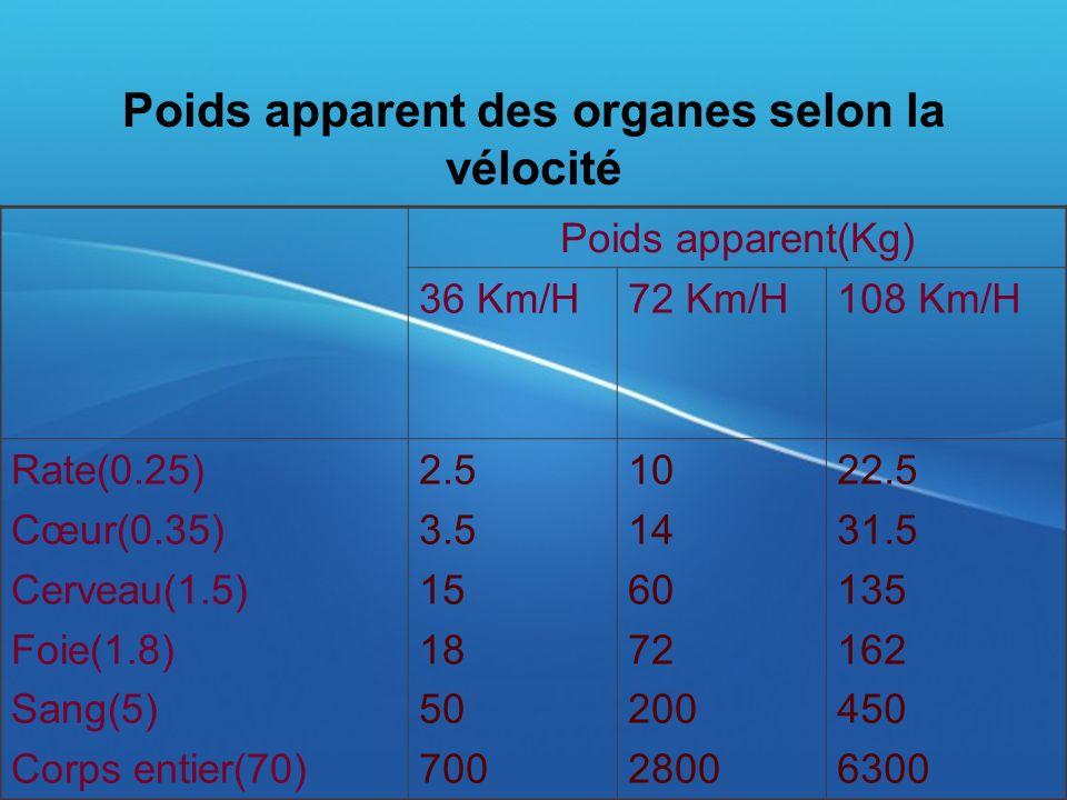 Poids apparent des organes selon la vélocité Poids apparent(Kg) 36 Km/H72 Km/H108 Km/H Rate(0.25) Cœur(0.35) Cerveau(1.5) Foie(1.8) Sang(5) Corps enti