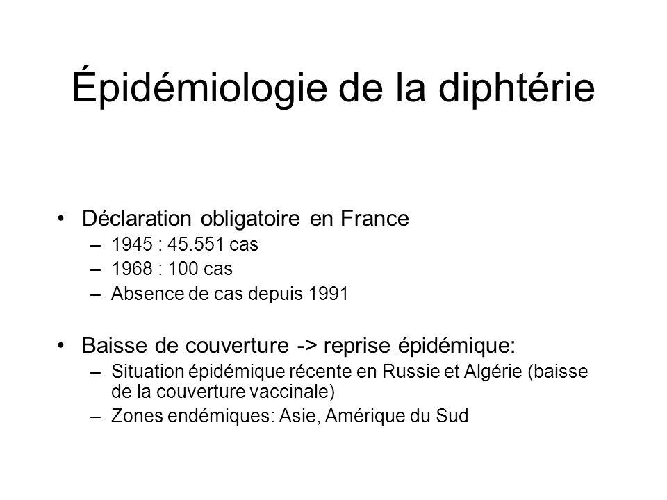 Incidence de la diphtérie en France 1945-2000 www.invs.sante.fr/publications/2003/snmi/SNMI-p001-196.pdf Généralisation de la vaccination effective à partir de 1945 Déclaration obligatoire –45 000 cas en 1945 –1 000 cas en 1960 –50 cas en 1970 –moins de 5 cas annuels depuis Le dernier cas déclaré date de 1989 4 souches de Corynebacterium diphtheriae reçues par le CNR en 2000, aucune ne sécrétait la toxine