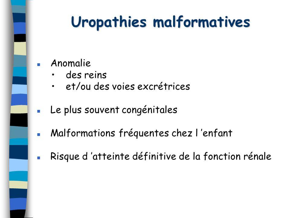 Uropathies malformatives Anomalie des reins et/ou des voies excrétrices Le plus souvent congénitales Malformations fréquentes chez l enfant Risque d a