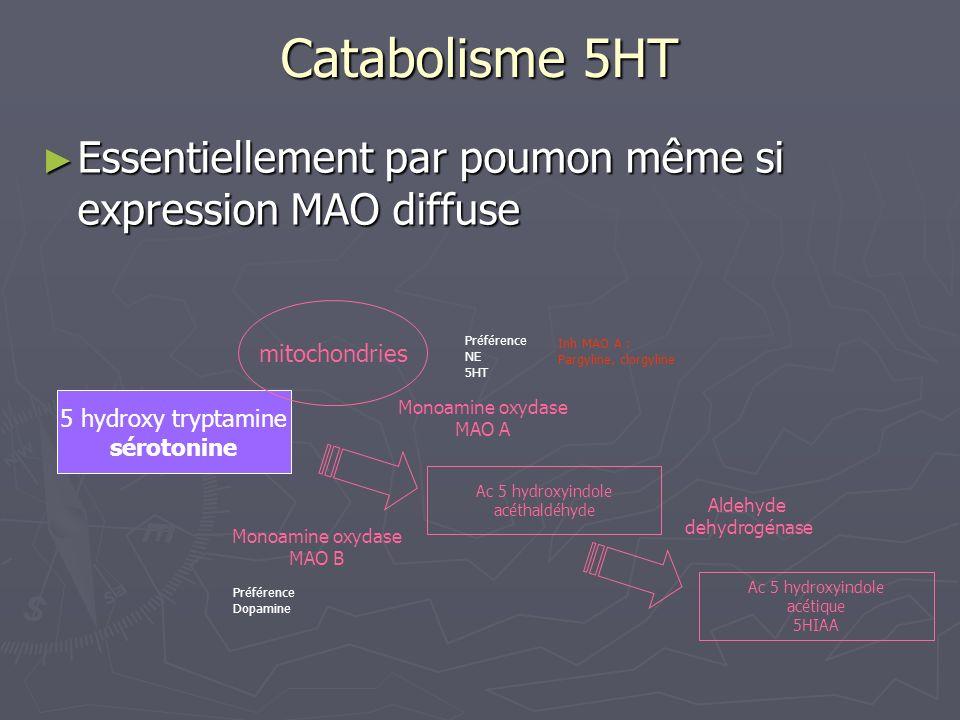 Catabolisme 5HT Essentiellement par poumon même si expression MAO diffuse Essentiellement par poumon même si expression MAO diffuse 5 hydroxy tryptami