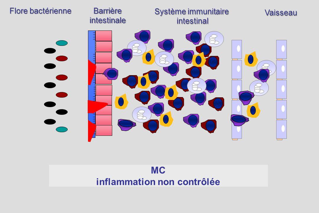 Barrièreintestinale Système immunitaire intestinal Flore bactérienne Vaisseau MC inflammation non contrôlée