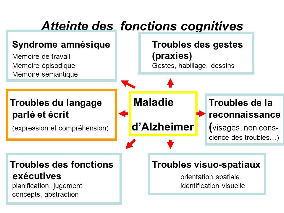 Atteinte des fonctions cognitives Syndrome amnésique Troubles des gestes Mémoire de travail (praxies), Mémoire épisodiqueGestes, habillage, dessins Mé