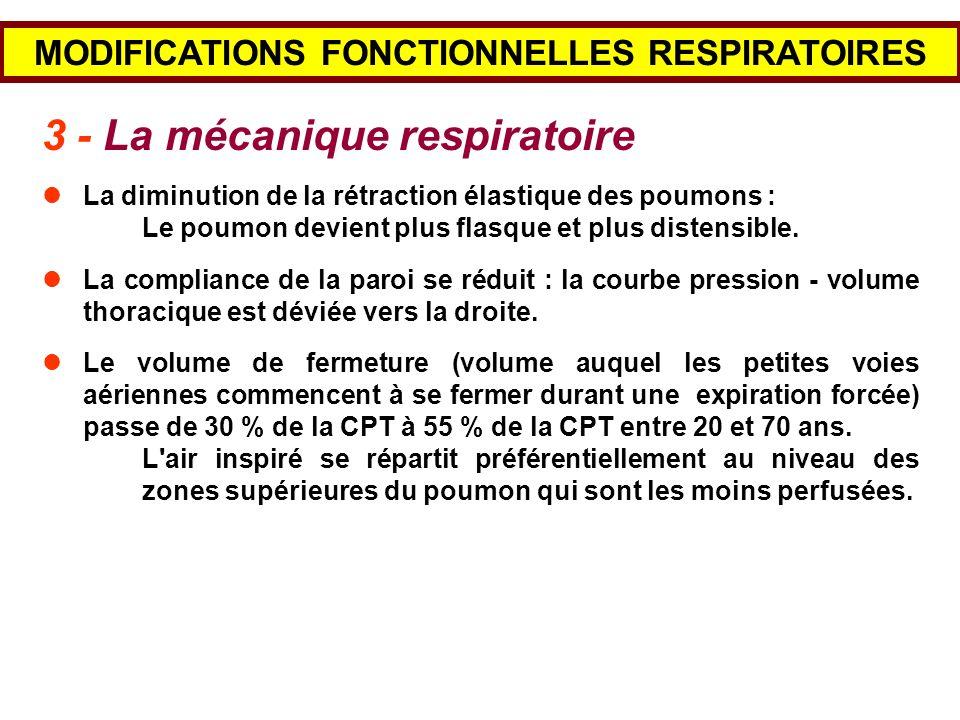 MODIFICATIONS FONCTIONNELLES RESPIRATOIRES 3 - La mécanique respiratoire La diminution de la rétraction élastique des poumons : Le poumon devient plus
