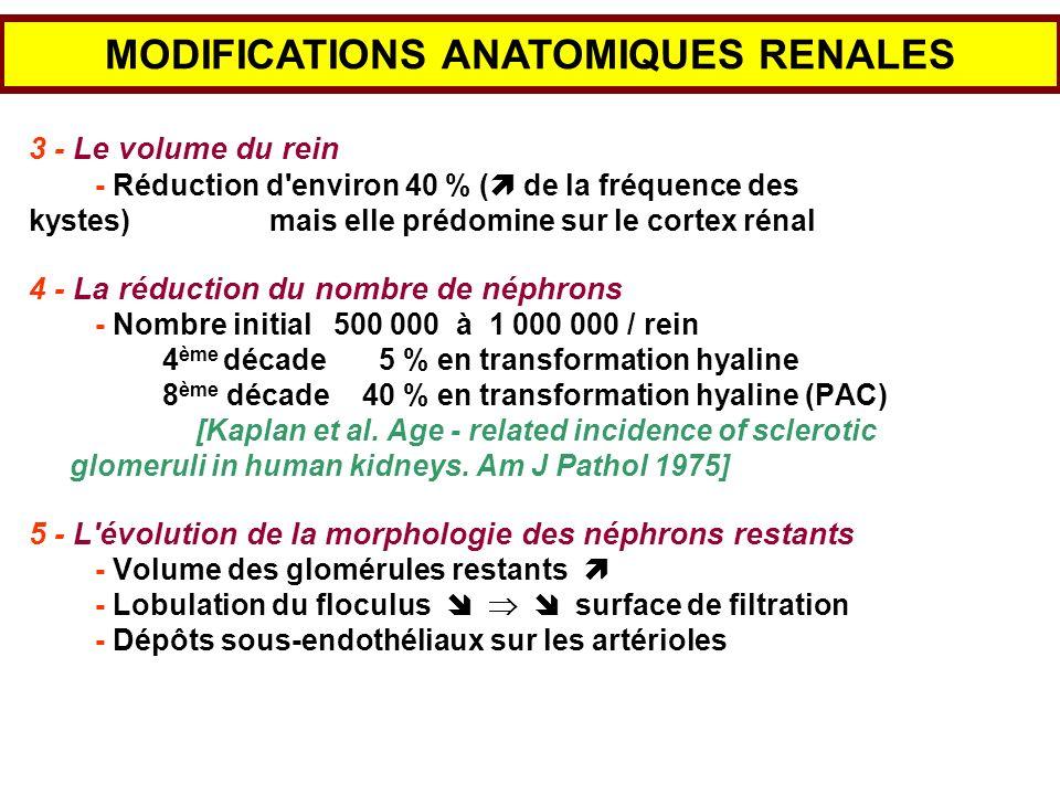 3 - Le volume du rein - Réduction d'environ 40 % ( de la fréquence des kystes) mais elle prédomine sur le cortex rénal 4 - La réduction du nombre de n