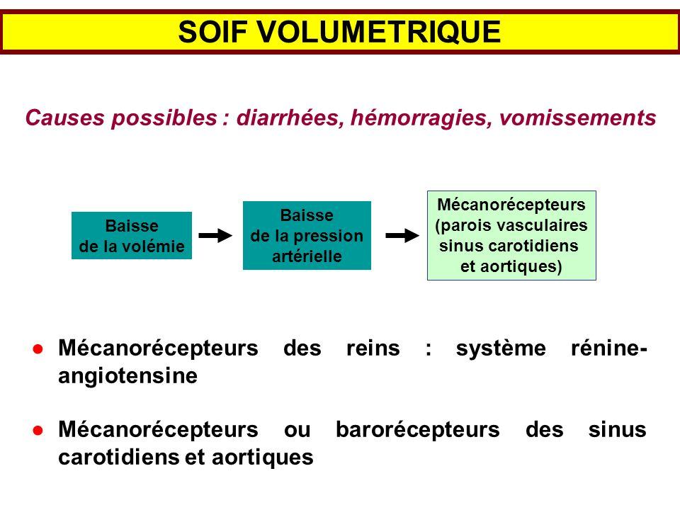 SOIF VOLUMETRIQUE Causes possibles : diarrhées, hémorragies, vomissements Mécanorécepteurs (parois vasculaires sinus carotidiens et aortiques) Baisse
