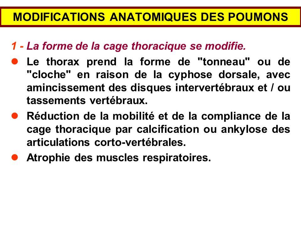 La réduction de lafflux sanguin dans les reins provoque la sécrétion dune hormone, la rénine.