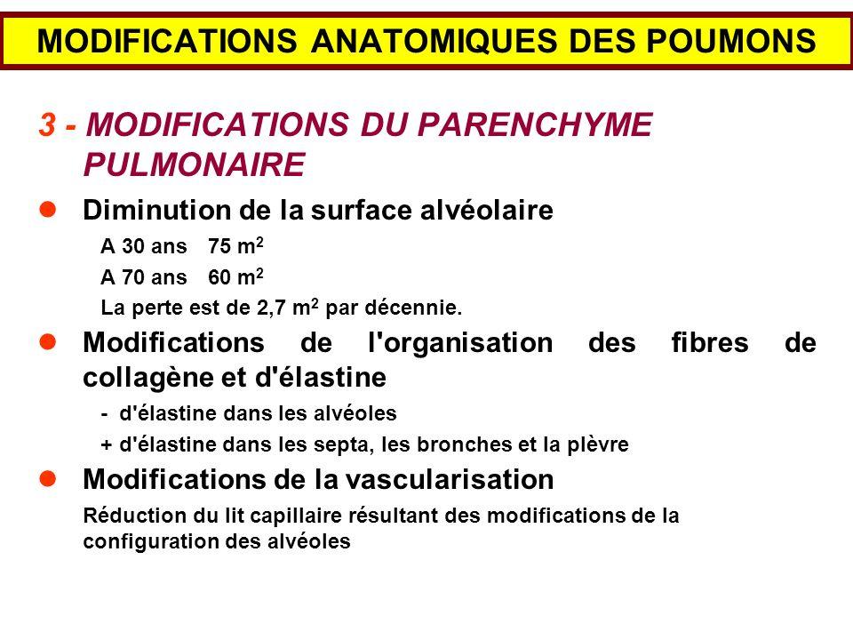 MODIFICATIONS ANATOMIQUES DES POUMONS 3 - MODIFICATIONS DU PARENCHYME PULMONAIRE Diminution de la surface alvéolaire A 30 ans75 m 2 A 70 ans60 m 2 La