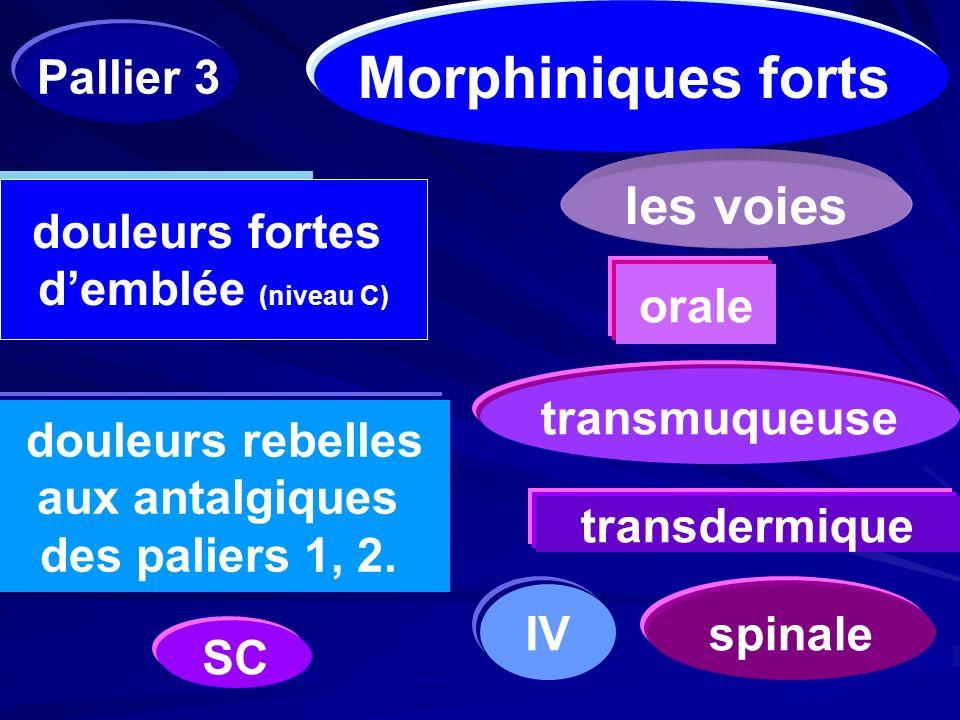 transmuqueuse transdermique IVspinale Morphiniques forts douleurs fortes demblée (niveau C) douleurs rebelles aux antalgiques des paliers 1, 2. les vo