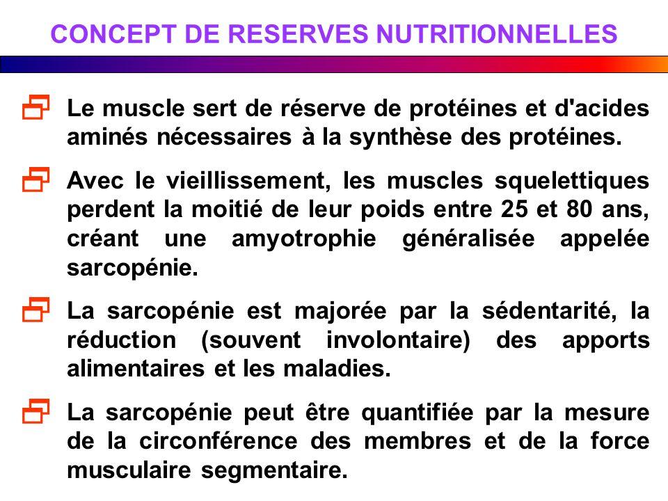 CONCEPT DE RESERVES NUTRITIONNELLES Le muscle sert de réserve de protéines et d'acides aminés nécessaires à la synthèse des protéines. Avec le vieilli