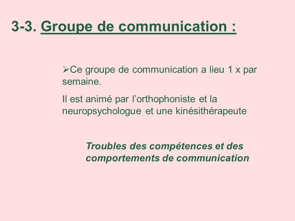 Ce groupe de communication a lieu 1 x par semaine. Il est animé par lorthophoniste et la neuropsychologue et une kinésithérapeute Troubles des compéte