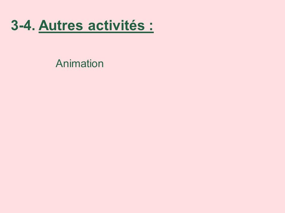 Animation 3-4. Autres activités :