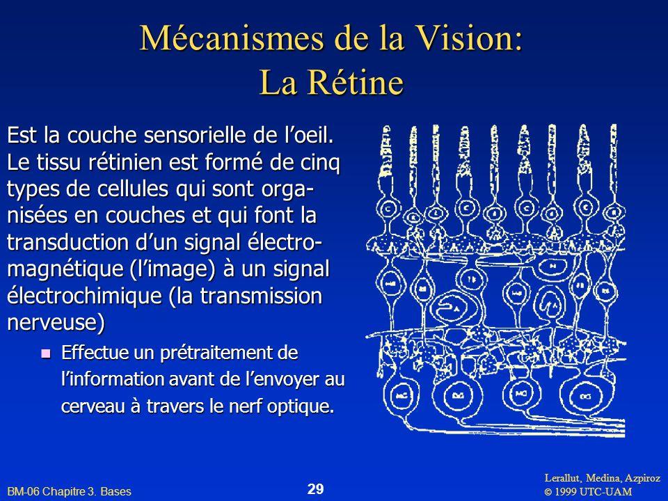 Lerallut, Medina, Azpiroz © 1999 UTC-UAM BM-06 Chapitre 3. Bases 29 Mécanismes de la Vision: La Rétine Est la couche sensorielle de loeil. Le tissu ré