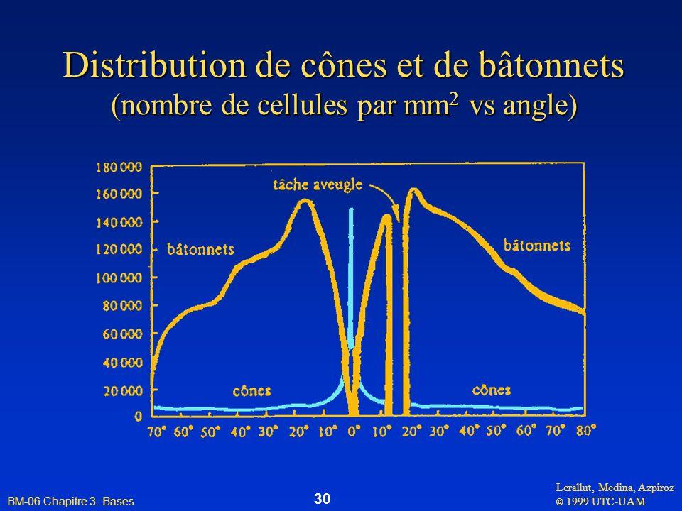 Lerallut, Medina, Azpiroz © 1999 UTC-UAM BM-06 Chapitre 3. Bases 30 Distribution de cônes et de bâtonnets (nombre de cellules par mm 2 vs angle)