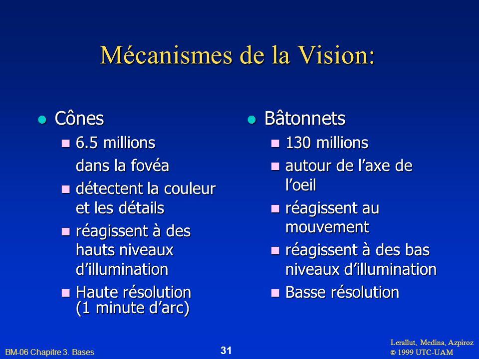 Lerallut, Medina, Azpiroz © 1999 UTC-UAM BM-06 Chapitre 3. Bases 31 Mécanismes de la Vision: l Cônes n 6.5 millions dans la fovéa dans la fovéa n déte