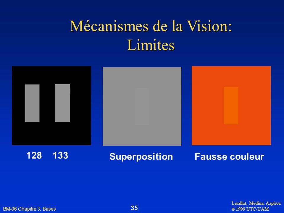 Lerallut, Medina, Azpiroz © 1999 UTC-UAM BM-06 Chapitre 3. Bases 35 Mécanismes de la Vision: Limites 128 133 Superposition Fausse couleur