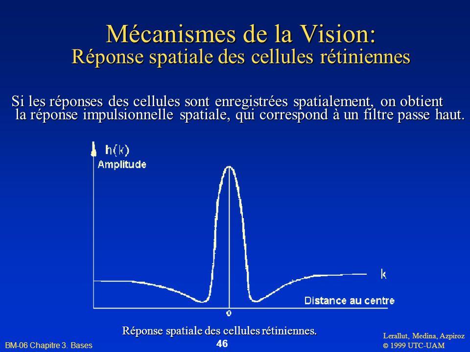Lerallut, Medina, Azpiroz © 1999 UTC-UAM BM-06 Chapitre 3. Bases 46 Mécanismes de la Vision: Réponse spatiale des cellules rétiniennes Si les réponses